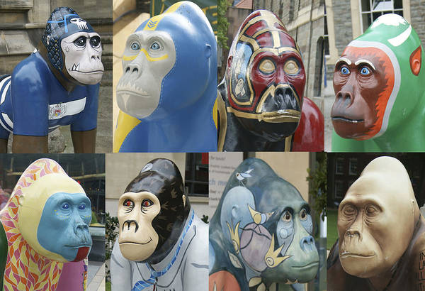 Gorillas In The Street Poster