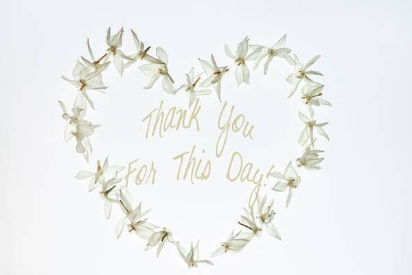 Gratitude Poster