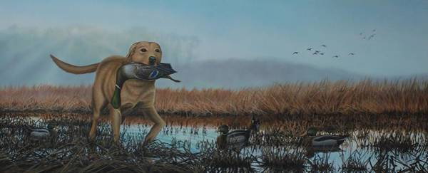 Gray Day Mallards Poster
