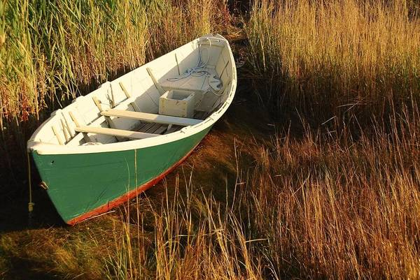 Poster featuring the photograph Green Boat by AnnaJanessa PhotoArt
