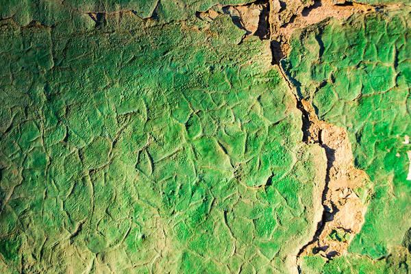 Green Flaking Brickwork Poster