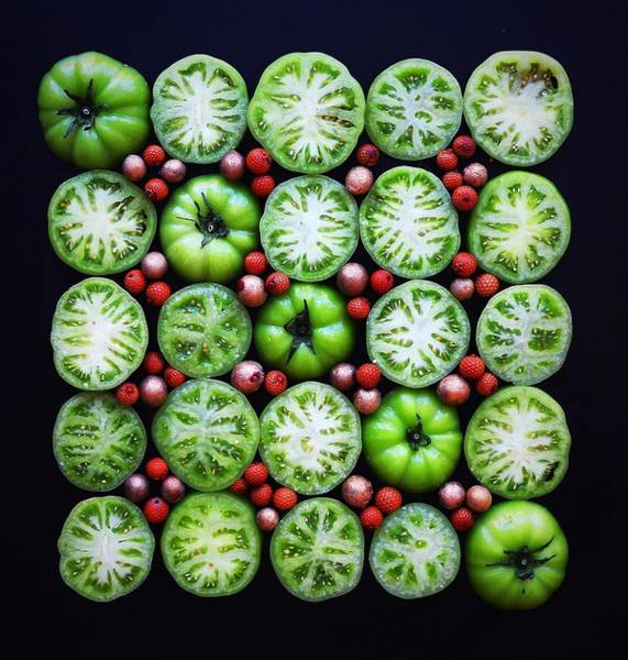 Green Tomato Slice Pattern Poster