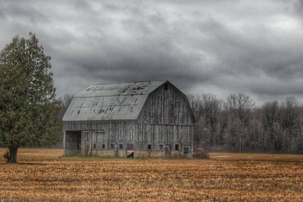 0024 - Grey Barn And Tree Poster