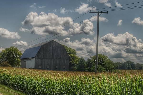 0013 - Grey Barn In A Cornfield Poster