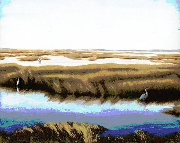 Poster featuring the painting Gulf Coast Florida Marshes I by G Linsenmayer