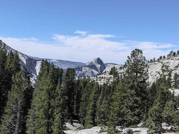 Half Dome From Olmstead Point Yosemite Valley Yosemite National Park Poster