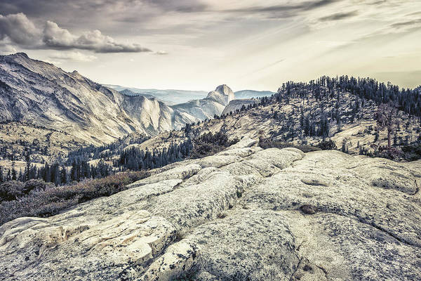 Half Dome View Poster