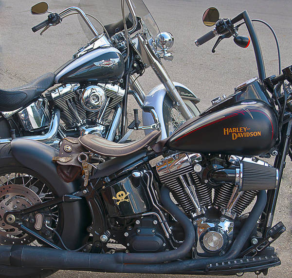 Harleys Poster