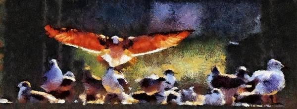 Harris Creek Gulls Poster