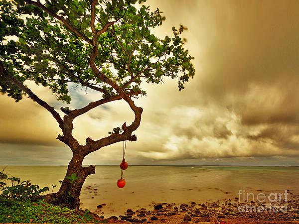 Hawaii Beach Tree Poster