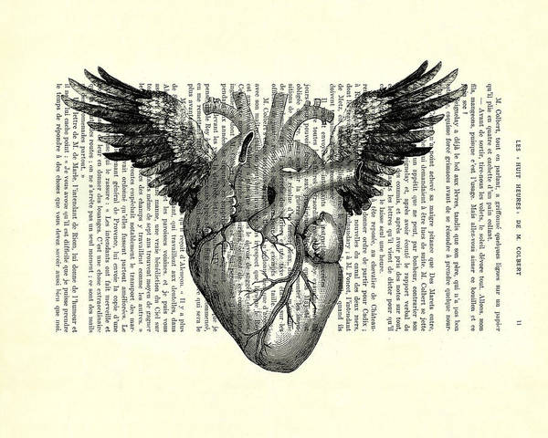 Heart With Wings In Black And White Poster