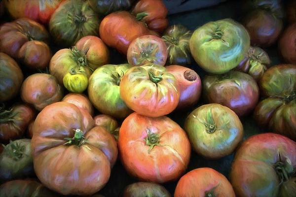 Heirloom Tomatoes Poster