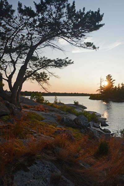 Hopewell Bay Island Wild Grass Sunset-1 Poster