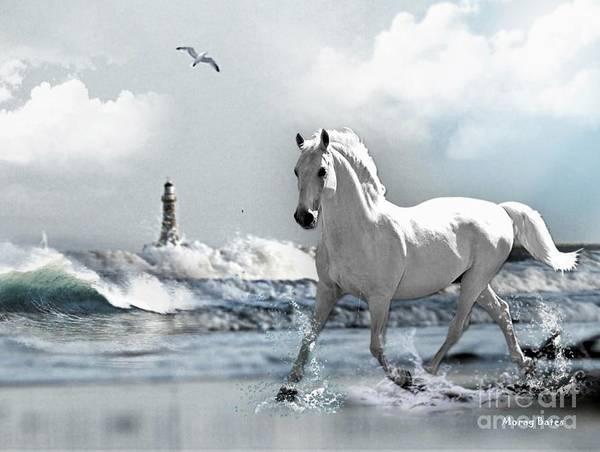 Horse At Roker Pier Poster