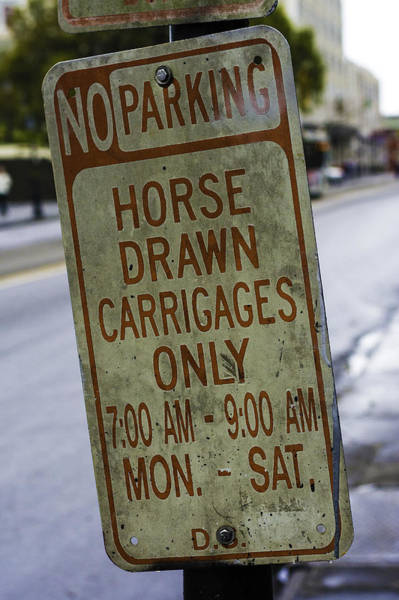 Horse Drawn Carriage Parking Poster