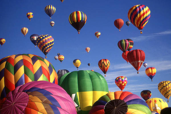 Beautiful Balloons On Blue Sky - Color Photo Poster
