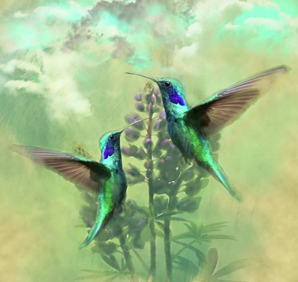 Hummingbird Song Poster