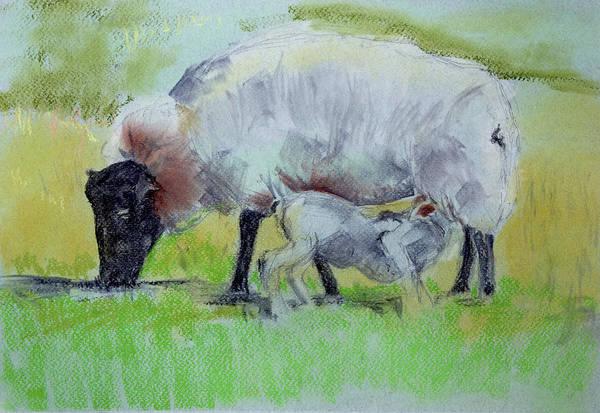 Hungry Lamb Poster