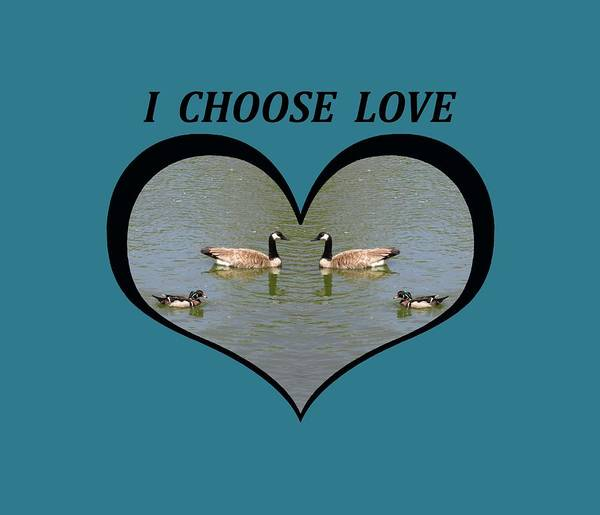 I Choose Love With A Spoonbill Duck And Geese On A Pond In A Heart Poster