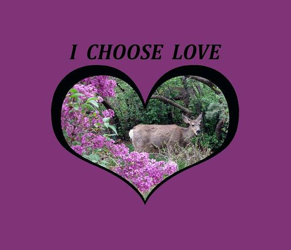 I Chose Love With Deers Among Lilacs In A Heart Poster