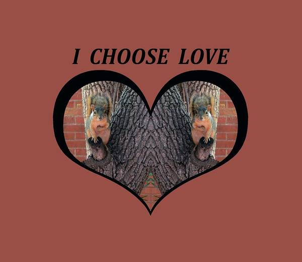 I Chose Love With Squirrels Hands On Hearts Poster