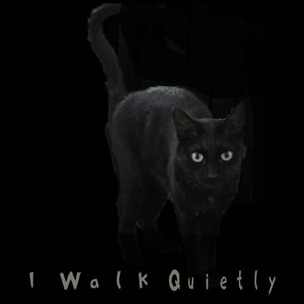 I Walk Quietly Poster