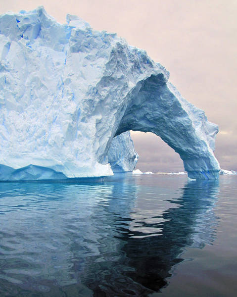 Iceberg Alley Poster