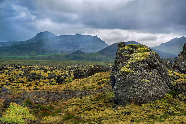 Iceland Moss Covered Lava Poster