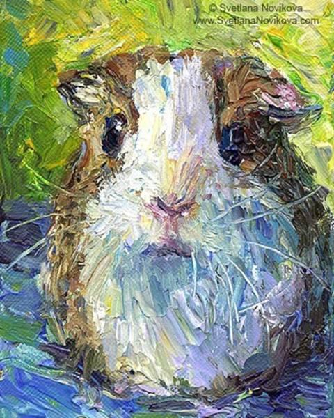 Impasto Impressionistic  Guinea Pig Art Poster