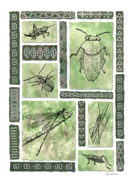 Insects Of Hawaii I Poster