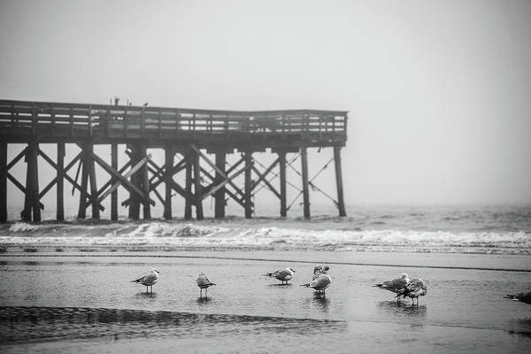 Isle Of Palms Pier And Fog Poster