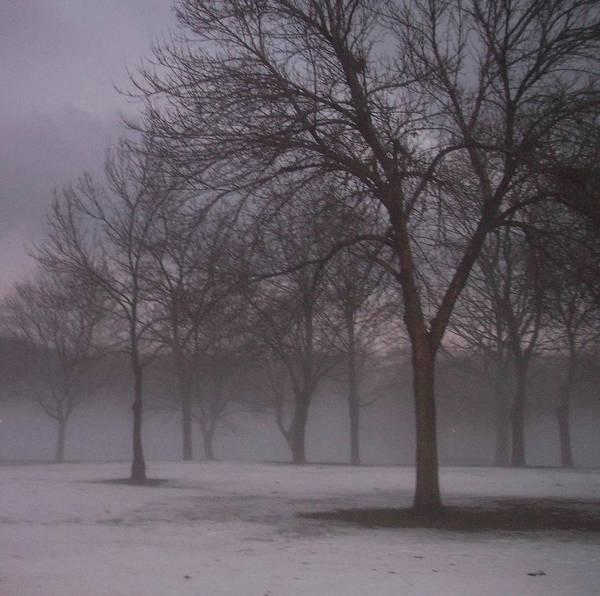 January Fog 4 Poster