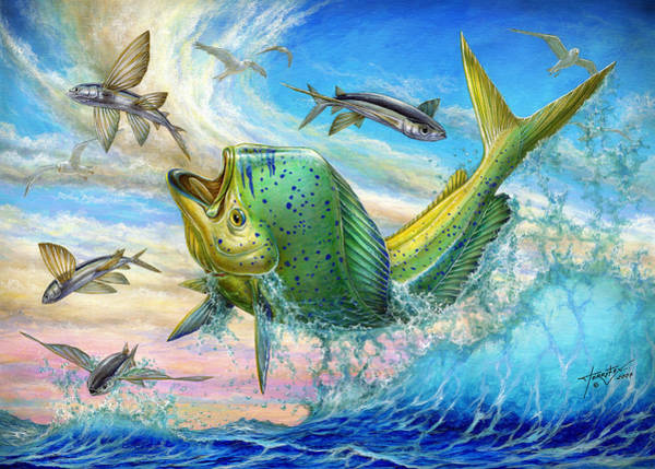 Jumping Mahi Mahi And Flyingfish Poster