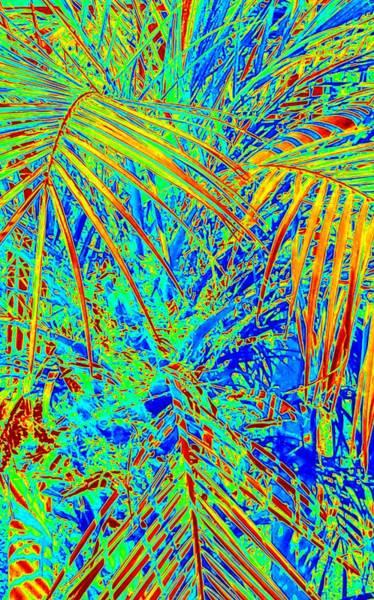 Jungle Vibe Poster