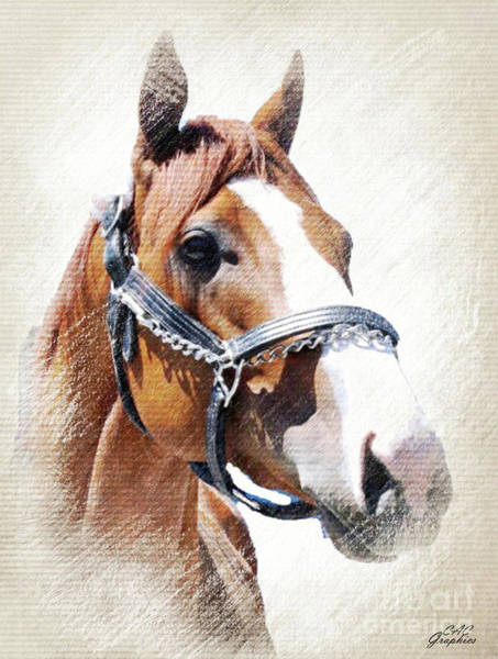 Justify Poster