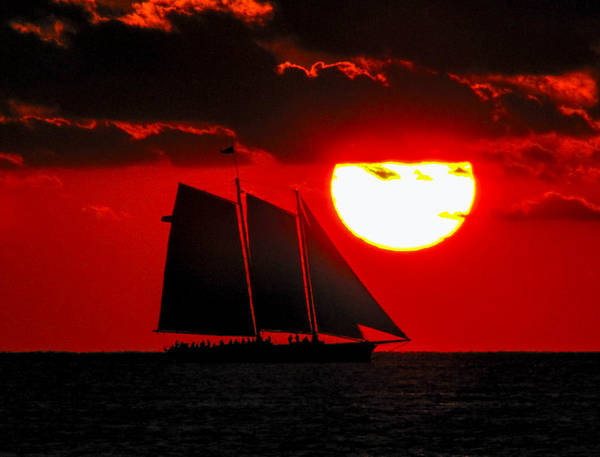 Key West Sunset Sail Silhouette Poster