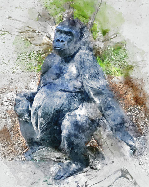 Lady Gorilla Sitting Deep In Thought Poster