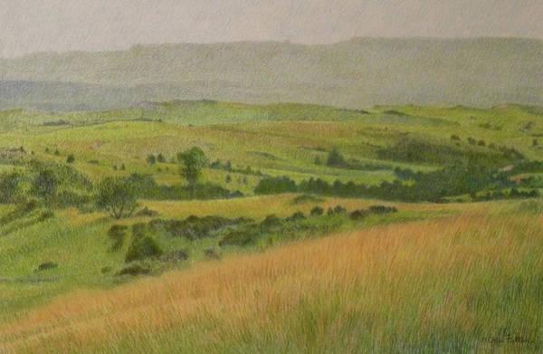 Land Of Grass Poster