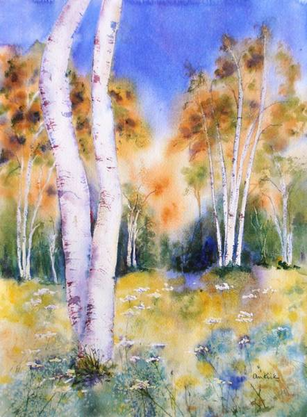 Late Summer Birches Poster
