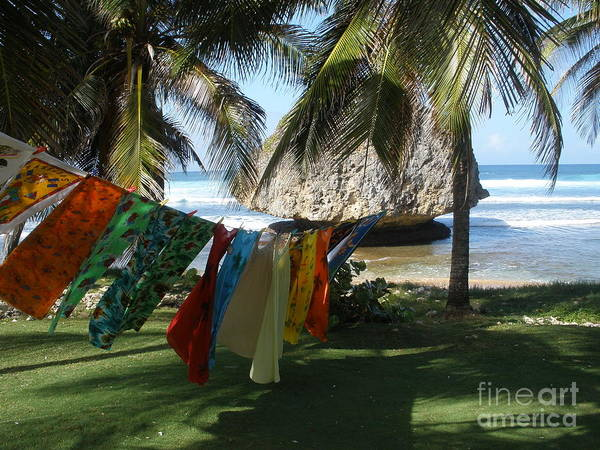 Laundry Day In Barbados Poster
