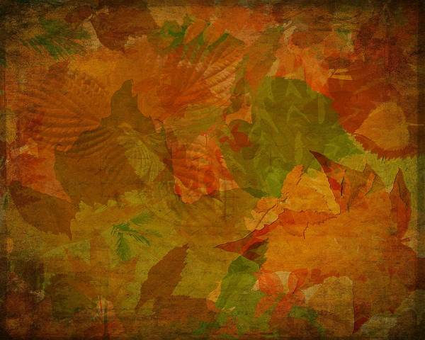 Leaf Texture And Background Poster