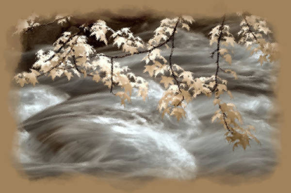 Leaves Over Gossamer Waters Poster