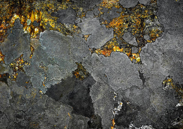 Lichen On Granite Rock Abstract Poster