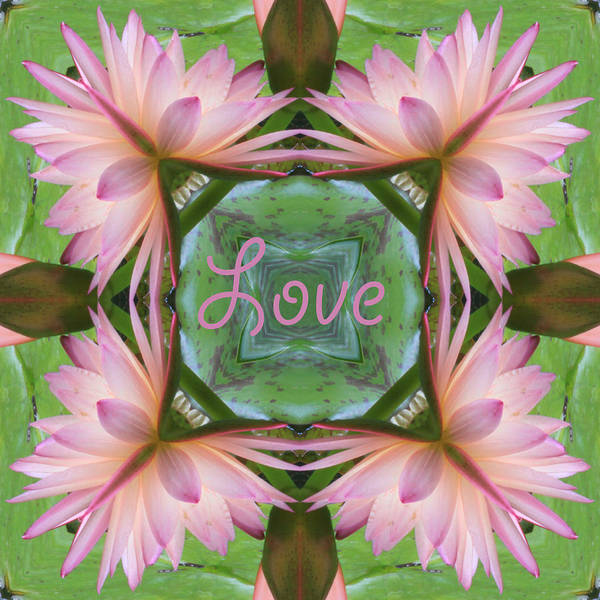 Lily Pad Love Poster
