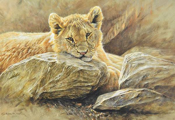 Poster featuring the painting Lion Cub Study by Alan M Hunt