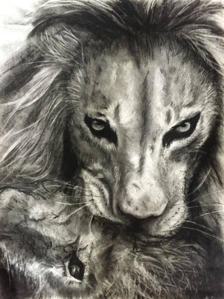 Lion's World Poster