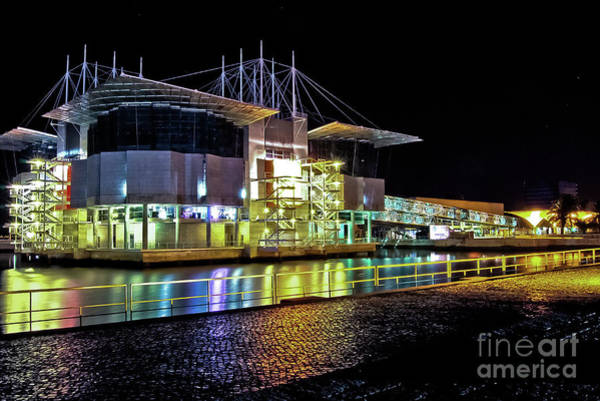 Lisbon - Portugal - Oceanarium At Night Poster