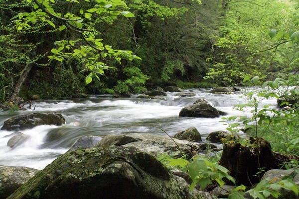 Litltle River 1 Poster