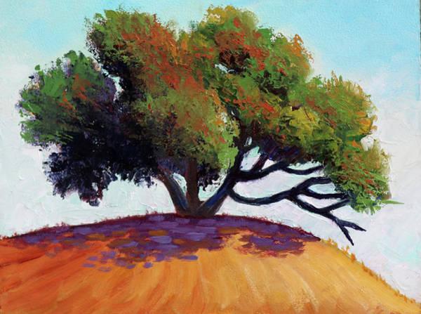 Live Oak Tree Poster