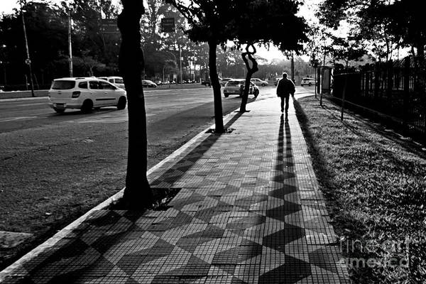 Lonely Man Walking At Dusk In Sao Paulo Poster
